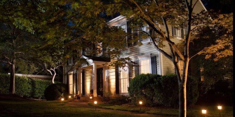 The Best Solar Uplights For Trees | How To Choose A Solar Uplight?