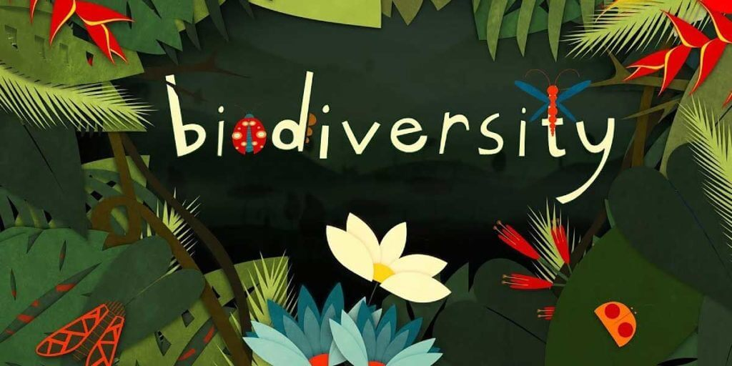 How Does Biodiversity Contribute To The Sustainability Of An Environment
