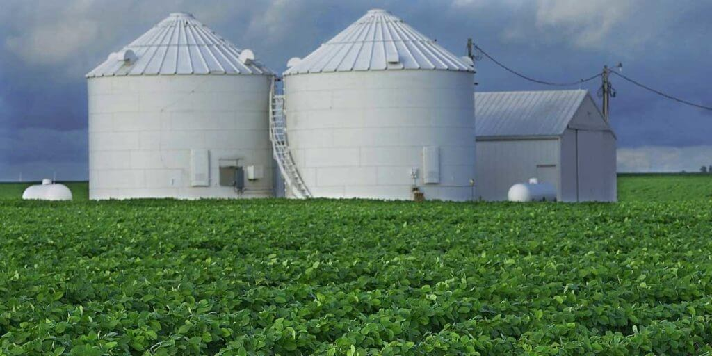 What Are The Advantages Of Monoculture Farming?