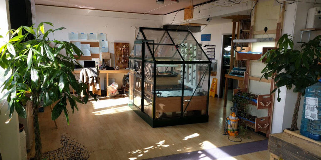 How To Choose An Indoor Greenhouse